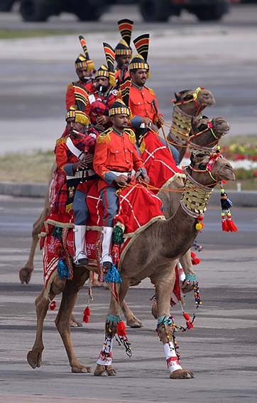 A Pakistani camel-mounted military band