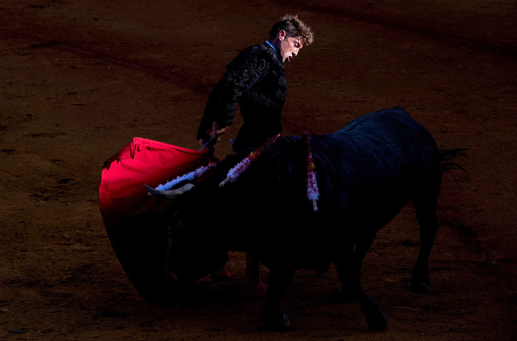 Seville Celebrates The Feria de Abril...SEVILLE, SPAIN - APRIL 13:  Bullfighter Manuel Escribano performs with a Vitorino Martin ranch fighting bull during a bullfight at La Maestranza bullring on the second day of the Feria de Abril (April's Fair) on April 13, 2016 in Seville, Spain. The Feria de Abril, which has a history dating back to 1857, takes place a fortnight after Easter each year. The origin of the fair was a cattle market but the event quickly turned its goal from commerce to having fun. More than one million local and international participants are expected to attend to Feria de Abril.  (Photo by David Ramos/Getty Images)