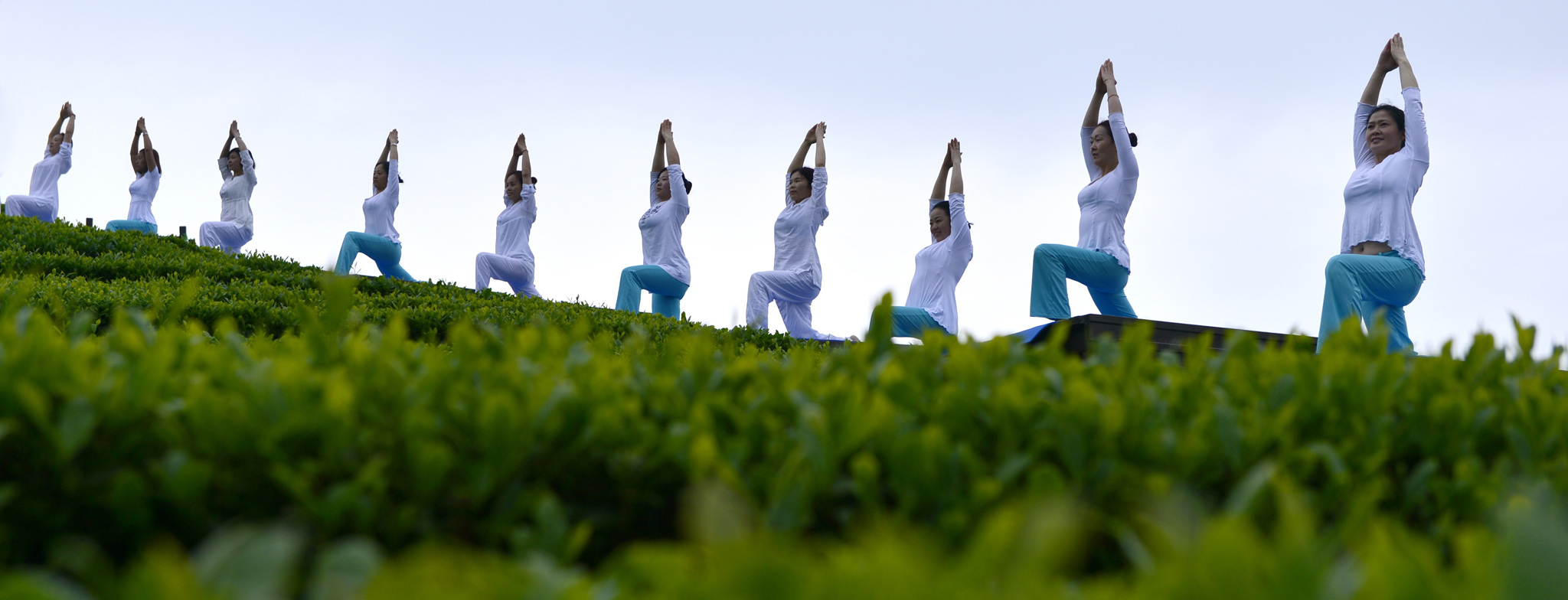 Yoga Performance At Tea Garden In Enshi...ENSHI, CHINA - APRIL 24:  (CHINA OUT) Yoga enthusiasts perform at a tea garden on April 24, 2016 in Enshi Tujia and Miao Autonomous Prefecture, Hubei Province of China.  (Photo by VCG/VCG via Getty Images)