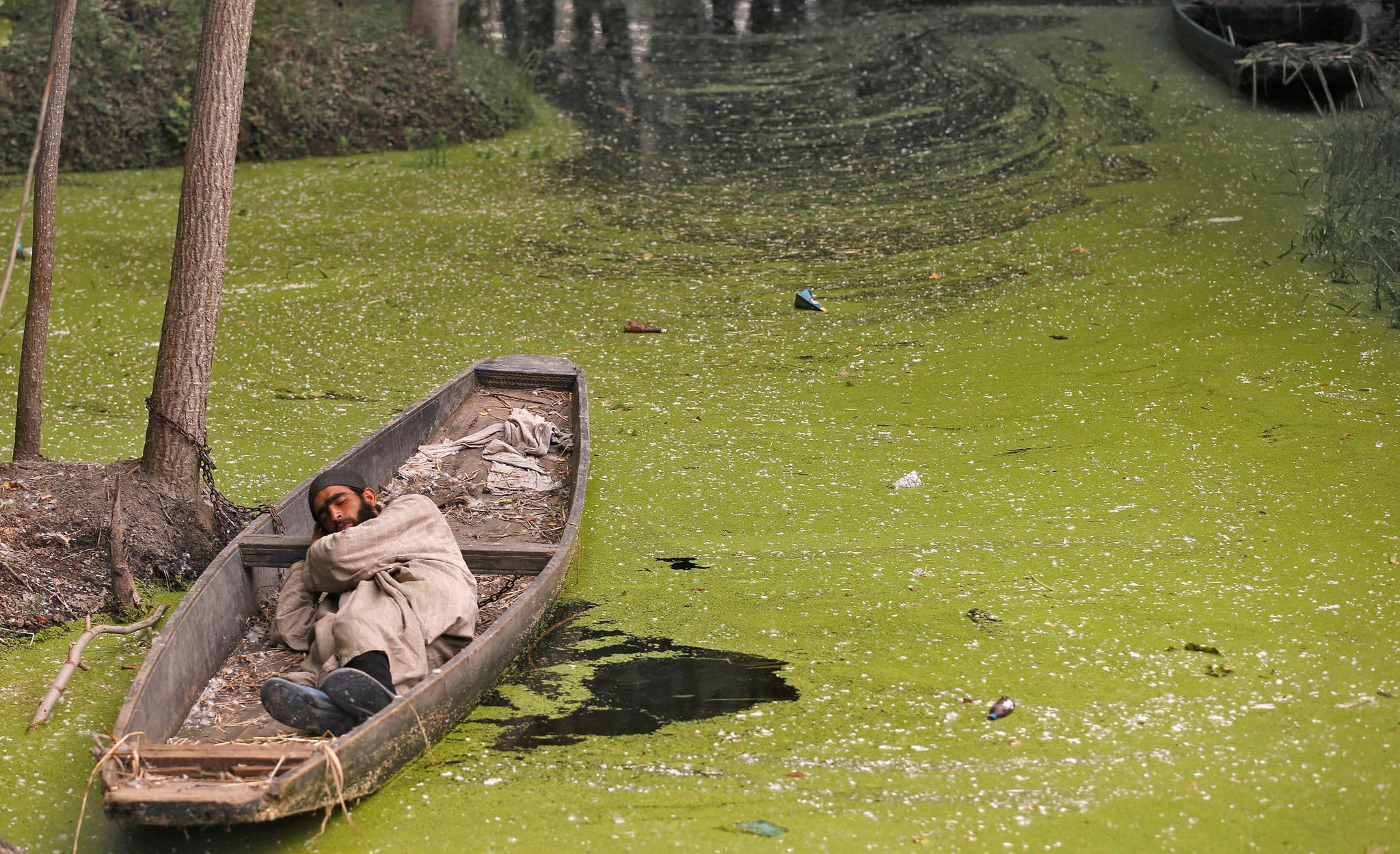 A Kashmiri man sleeps in a boat along the algae-covered Anchar Lake in Srinagar May 12, 2016