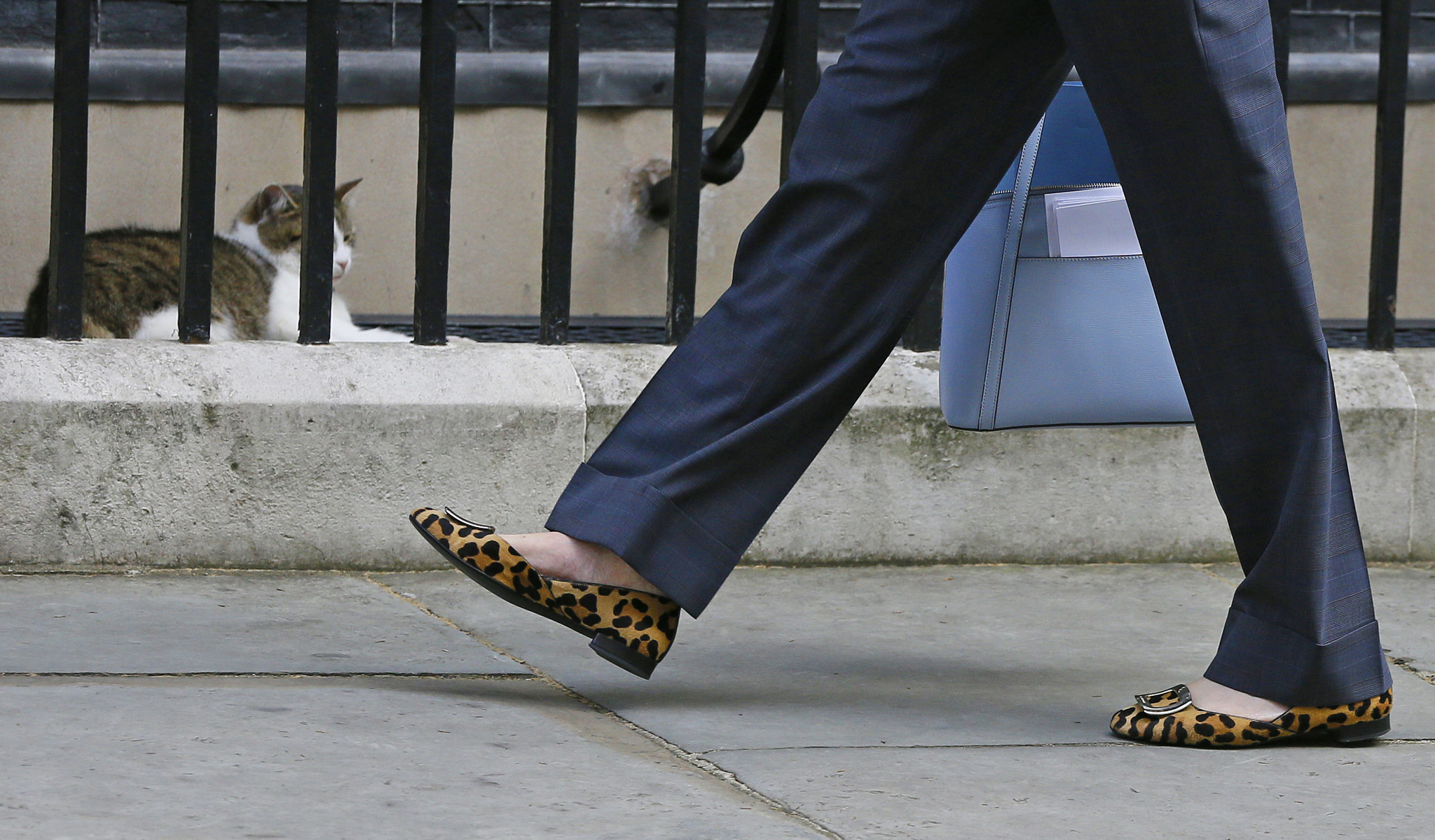 The shoes of Britain's Home Secretary Theresa May as she walks past Larry the Downing Street cat as she arrives to attend a cabinet meeting at 10 Downing Street, in London, Tuesday, July 12, 2016. Theresa May will become Britain's new Prime Minister on Wednesday.