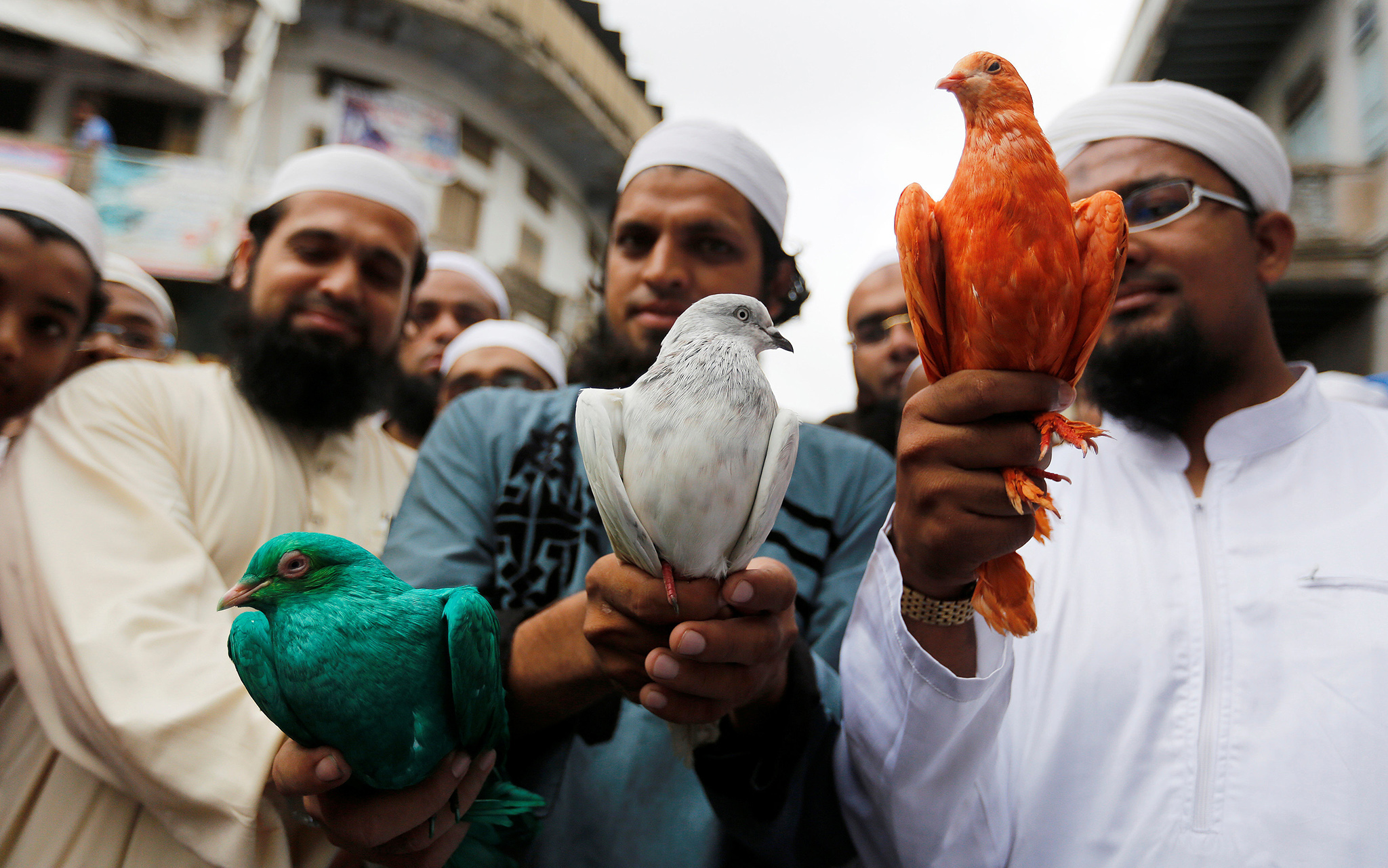 Muslims hold pigeons dyed in the colours of the Indian flag, during a march to celebrate India's Independence Day in Ahmedabad, India