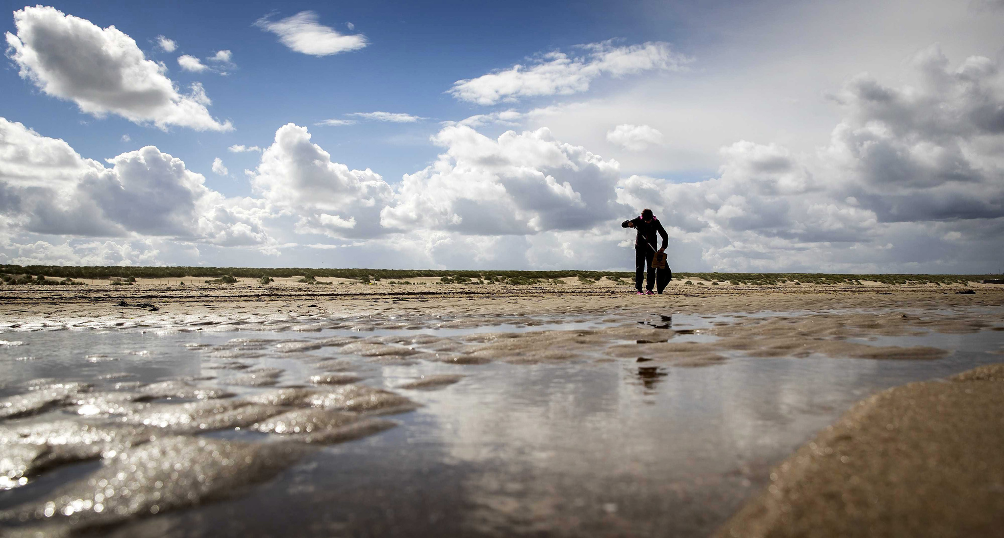 A volunteer looks for waste in the mudflat while joining a cleaning operation along the North Sea coast in Monster, The Netherlands