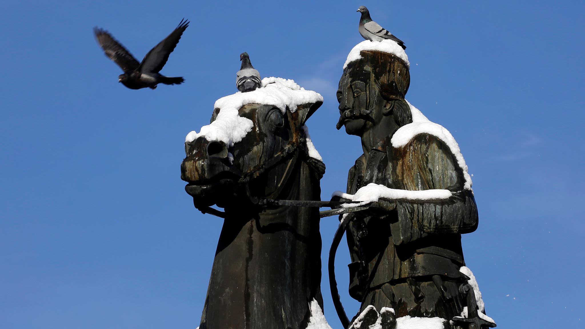 Pigeons perch on the statue of Greek Independence war hero Georgios Karaiskakis following a rare snowfall, in Athens