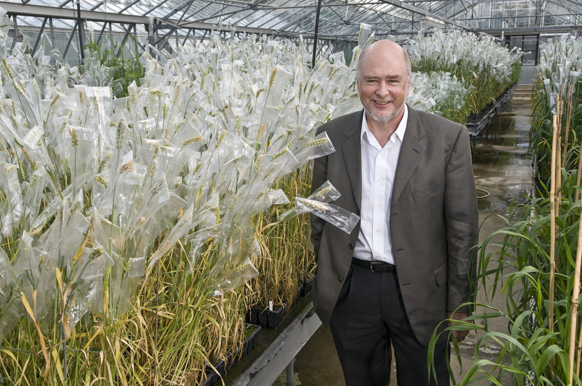 Chris Lamb in his glasshouse